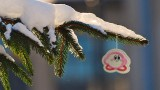 Holiday Wishlist 2010