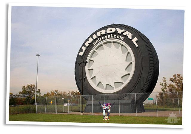 Team Rocket Tourism - Tire