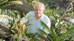 David Attenborough Plants 3D Documentary