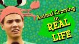 AnimalCrossingThumb2