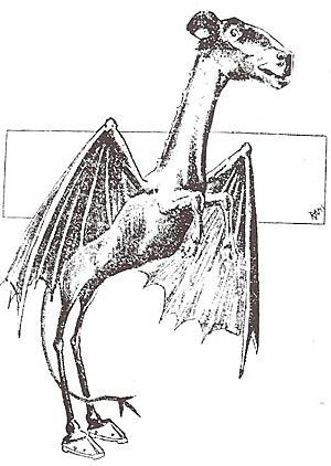 The Jersey Devil, circa 1909